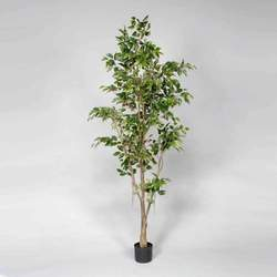 Green 7'H Polyester Potted Ficus Tree w/1197 Leaves